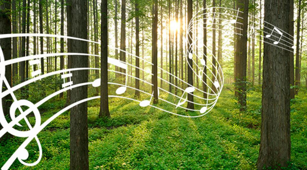 musikmiljoe