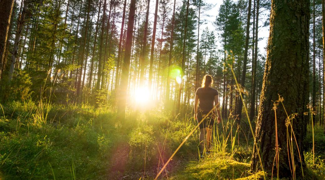Kvinde vandre i natur